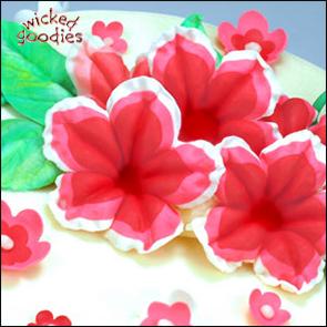 Tri-Color Modeling Chocolate Petunias